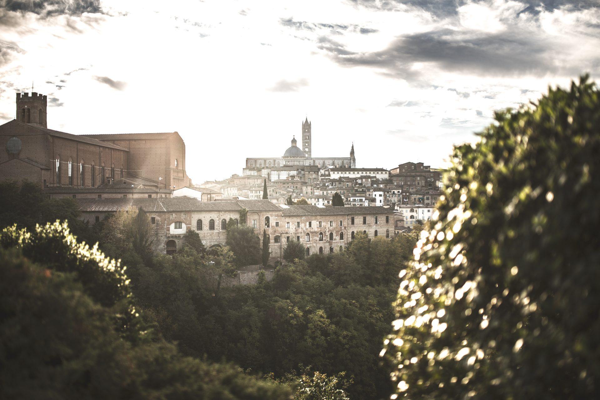 Blick auf den Dom von Siena