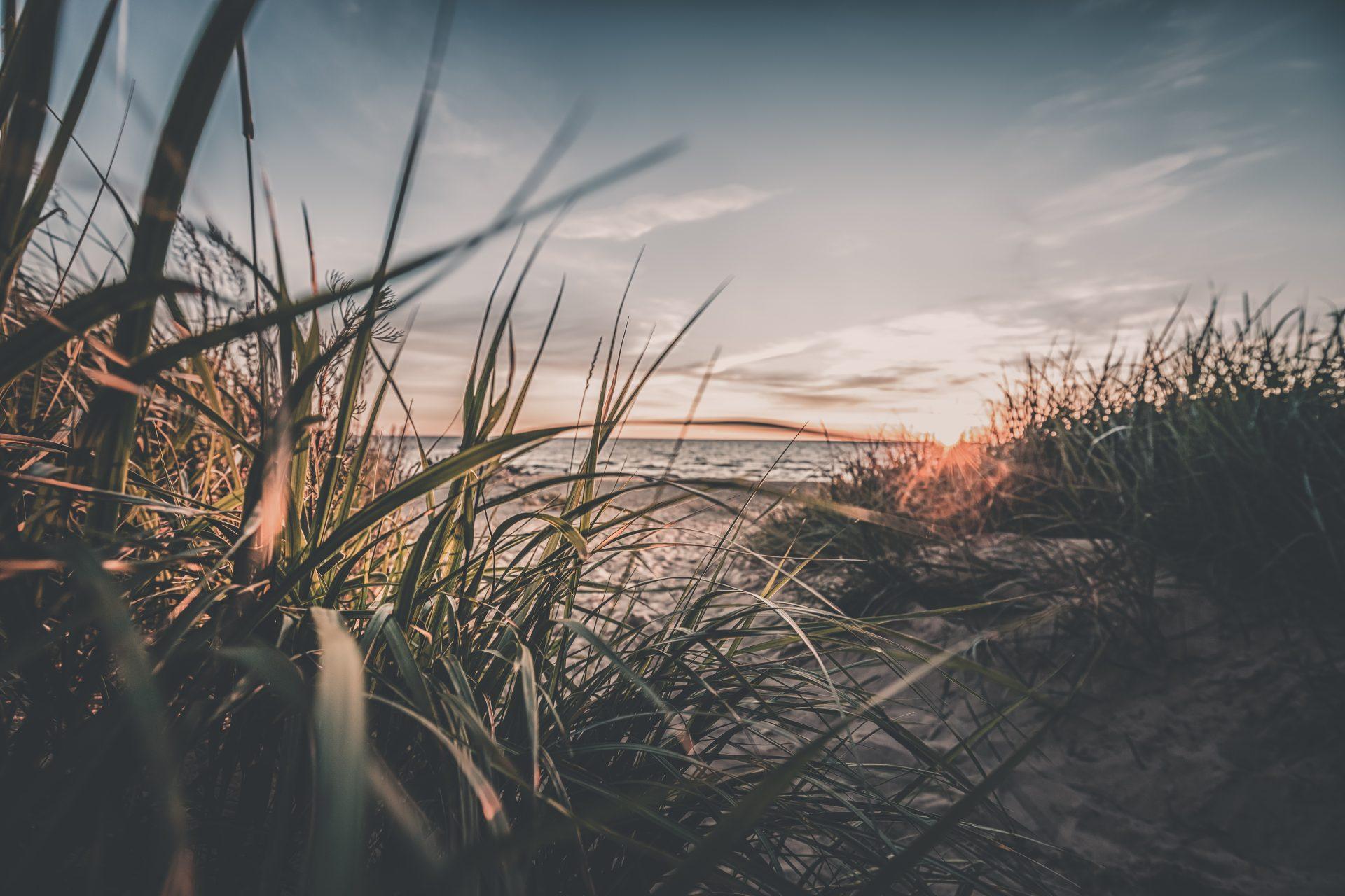 Strand in Litauen